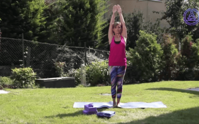 Online jóga könyvtár – Felső kartartás