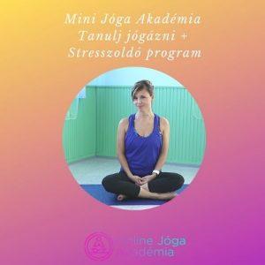 MJA+Stresszoldo